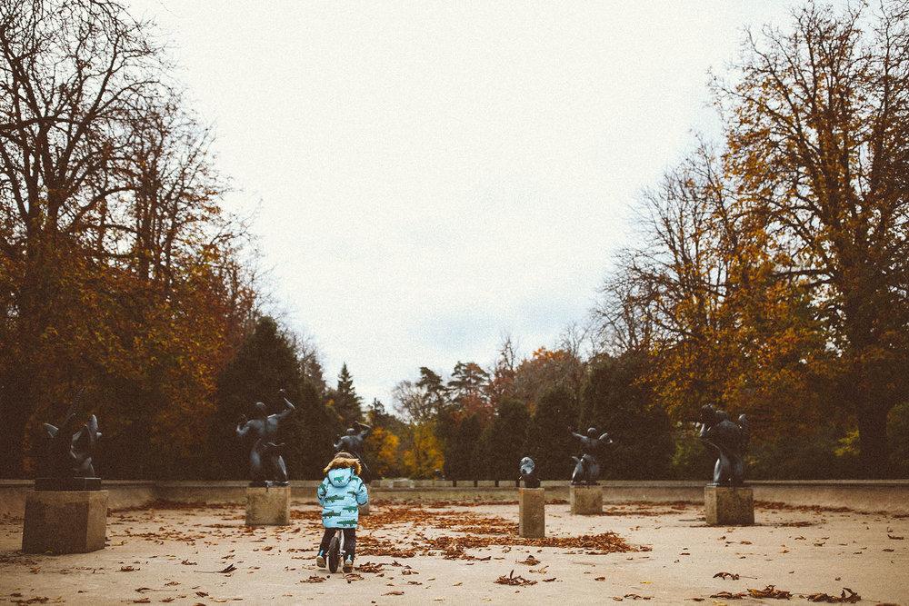 fall_cranbrook_hugolovestiki27.jpg