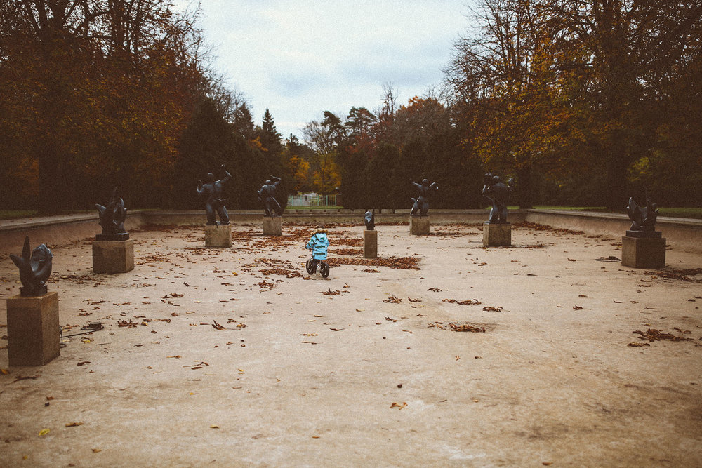 fall_cranbrook_hugolovestiki26.jpg
