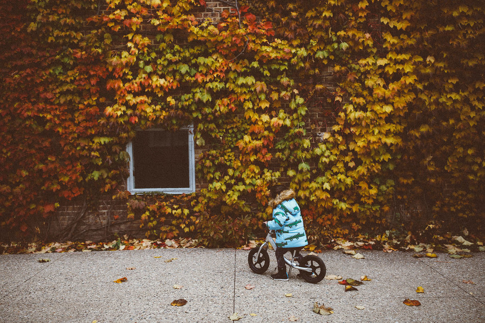 fall_cranbrook_hugolovestiki37.jpg
