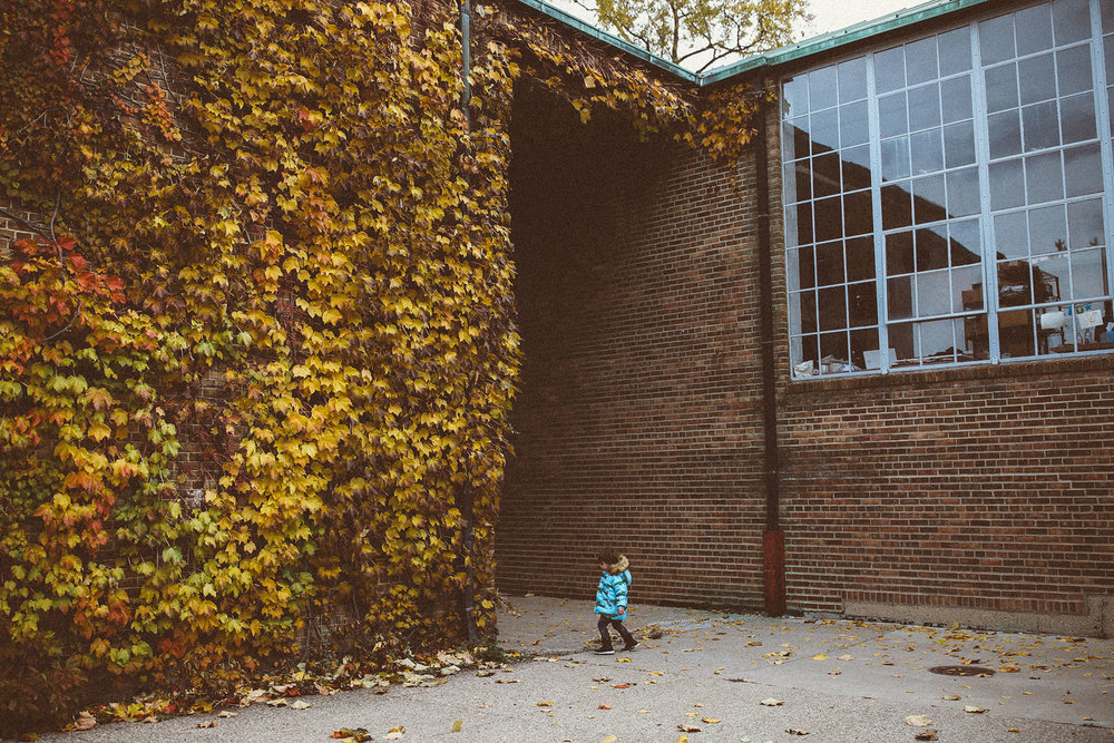 fall_cranbrook_hugolovestiki51.jpg
