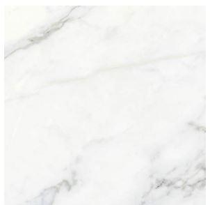 1688 Carrara.JPG