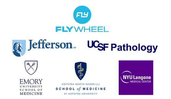 2015 honored mentor_sponsors.jpg