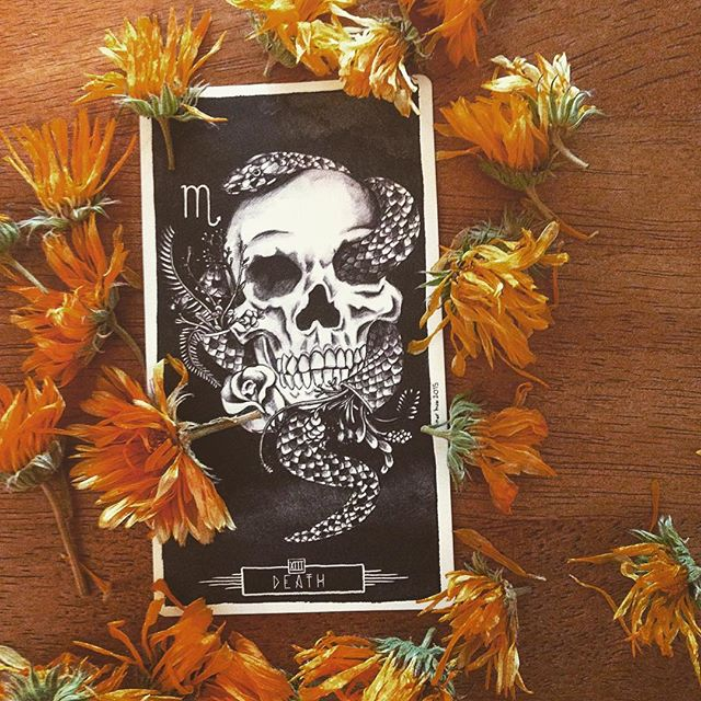🦇🍁happy autumn equinox🍁🦇 Death is a card about loss. Yes, it's rebirth, transformation, but first and foremost it's loss. Here we are heading into the darker half of the year- a loss of light.  We'd do well to take this chance to reckon with what else we have lost, so that we may mourn it and continue; life and death and life, everything is a cycle. Without the cycle, we're stagnant, and that is TRUE death. 🍁🦇🖤🦇🍁 Today on the Autumn Equinox honor the cycle... witches see the year as a Wheel, no beginning, no end... 🍁🦇🖤🦇🍁 (wild-harvested calendula flowers.) #autumnequinox #fallequinox #deathcard #luminatarot #tarotblog