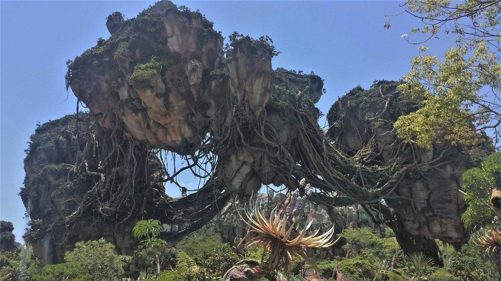 Tips for Disney's Pandora World of Avatar