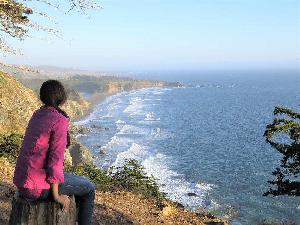 Looking out over the coast of Central California