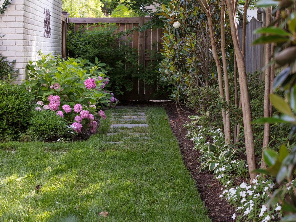 Marcia Fryer Landscape Designs | New West End Backyard | Hardscape Patio | 12.jpeg