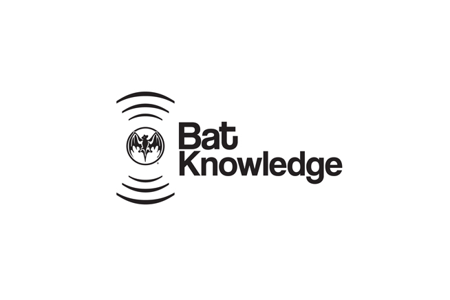 BatKnowledge.jpg