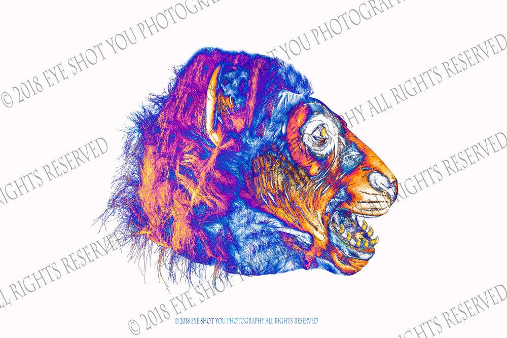 Art Lions #1
