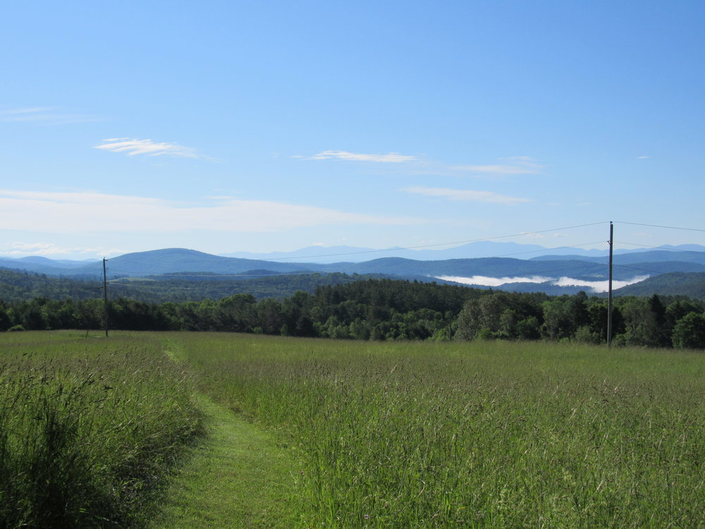 View from hiking trail looking toward the White Mountains in New Hampshire