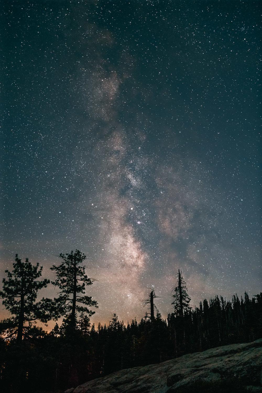 2018.09.26_Yosemite_Day1-6279-Median-Edit.jpg