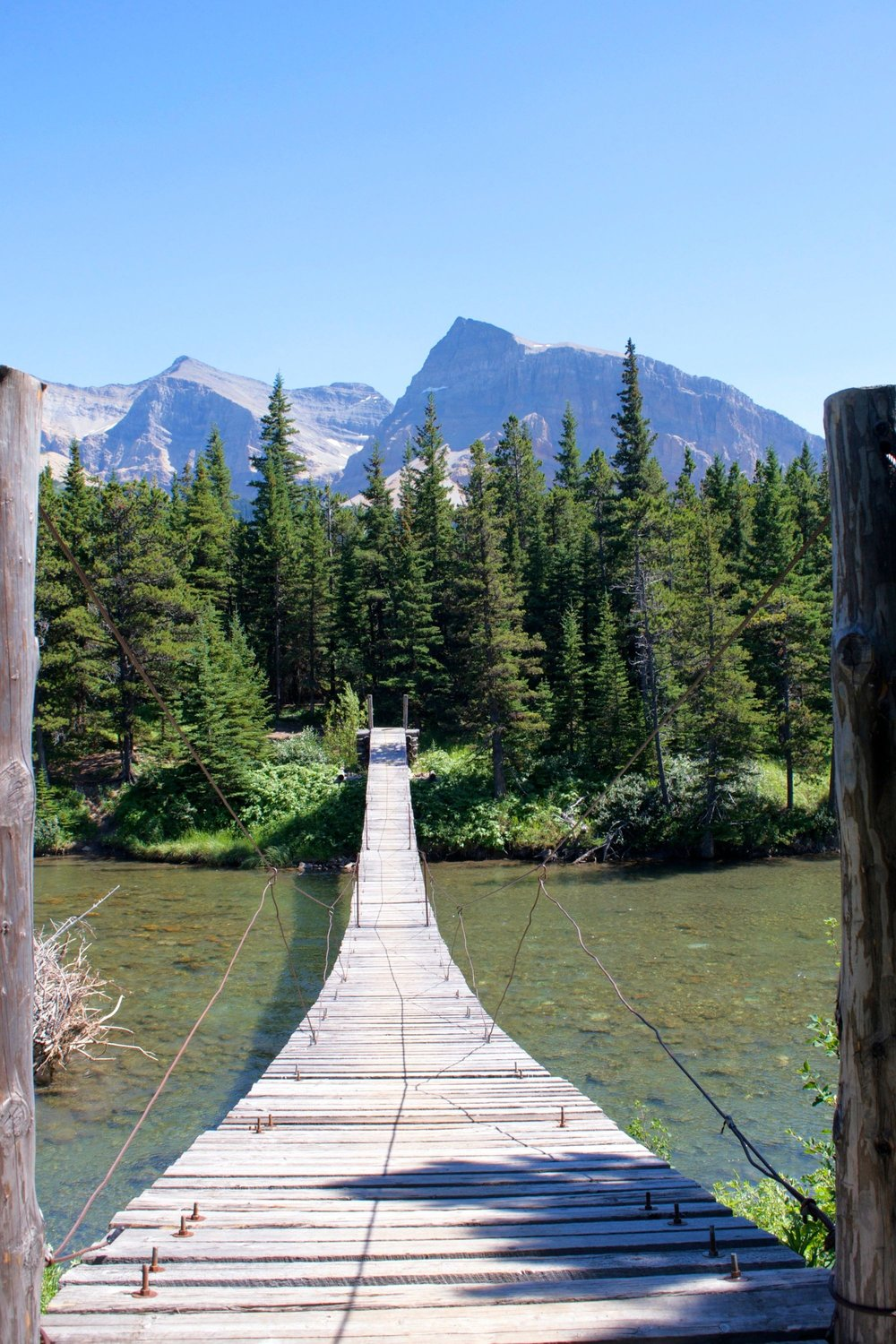 The longest footbridge in Glacier National Park's backcountry, according to the ranger we ran into.