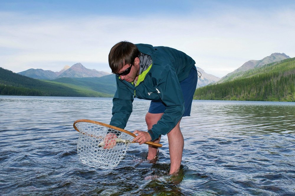 Michael pulling out a cutthroat trout with a net in Glacier National Park, MT. Wearing a simple wading jacket and no shoes.