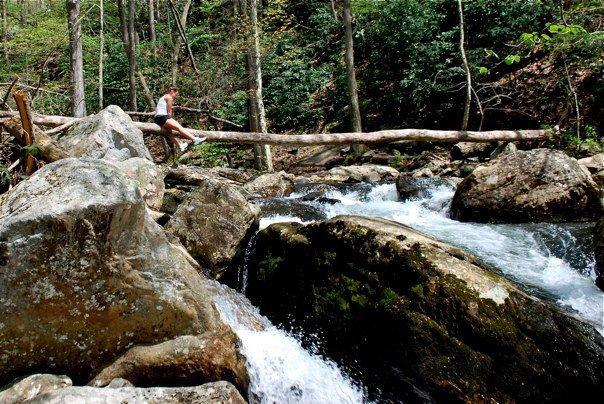 cascades falls near blacksburg.jpg