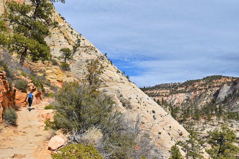 Observation Point, Zion National Park, Utah