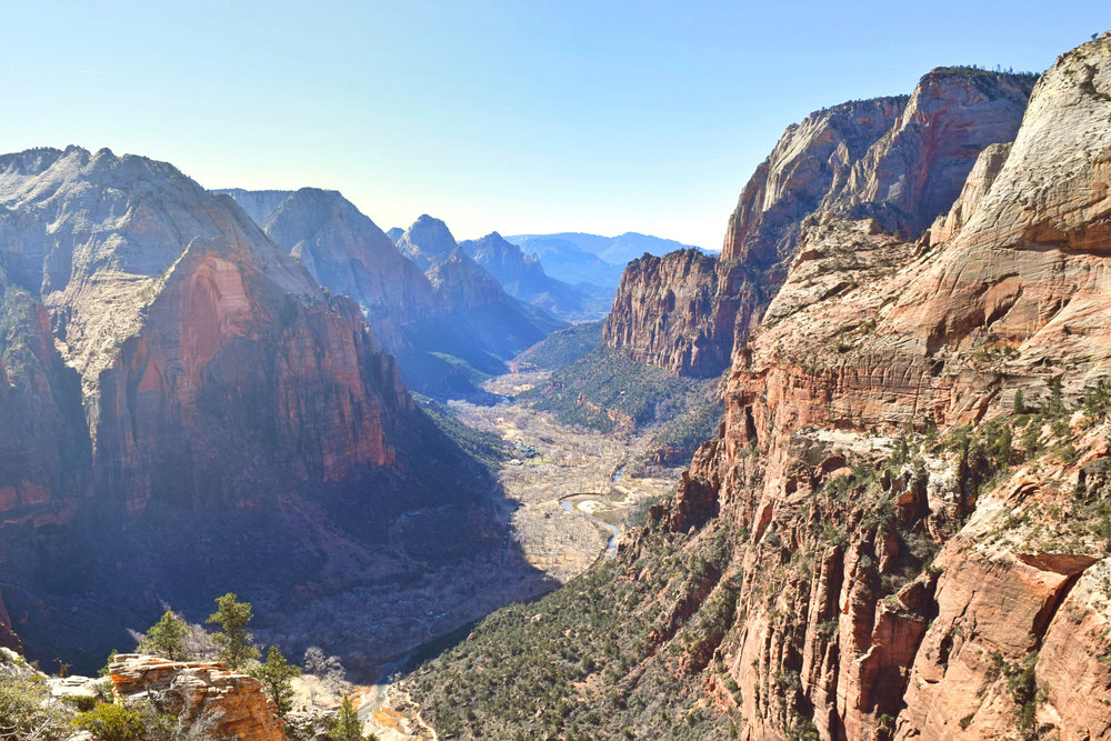 The view from Angels Landing looking south