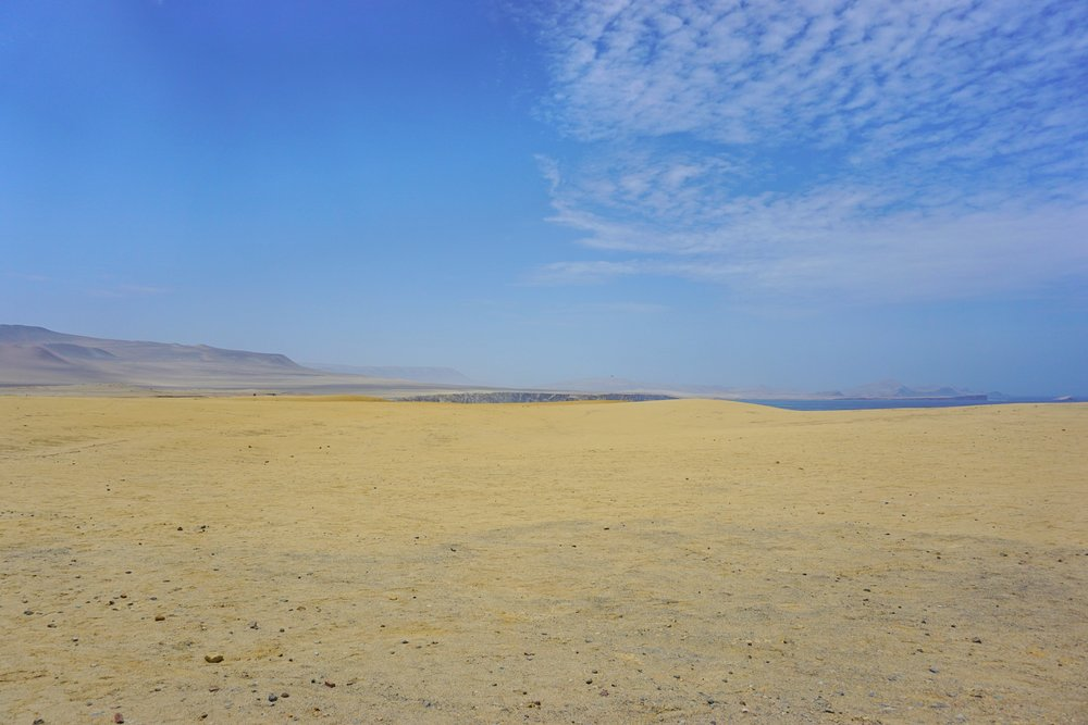 paracas national reserve 2.jpg