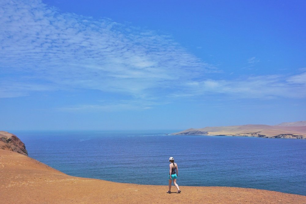 Paracas National Reserve 4.jpg