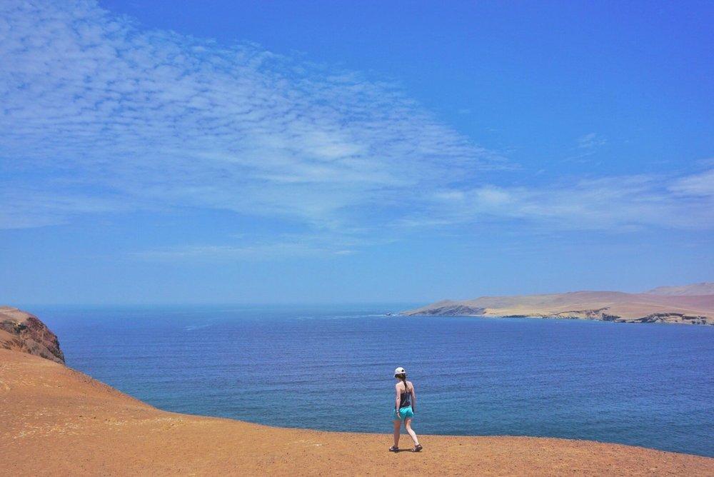 Paracas+National+Reserve+4.jpg