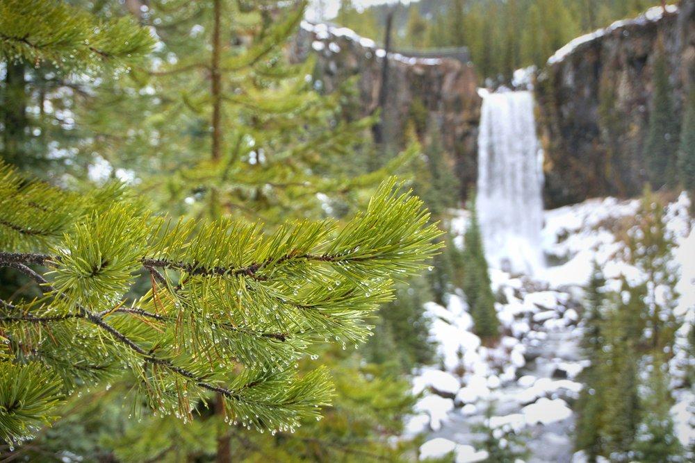 Snowshoe to Tumalo Falls, Bend Oregon