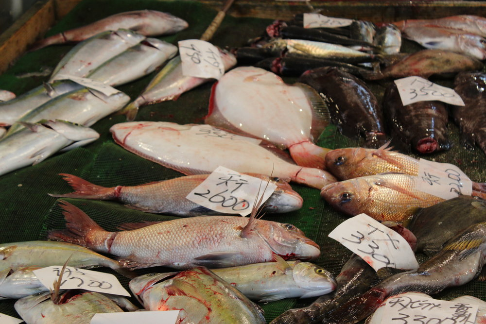 Fish for sale, Tsukiji