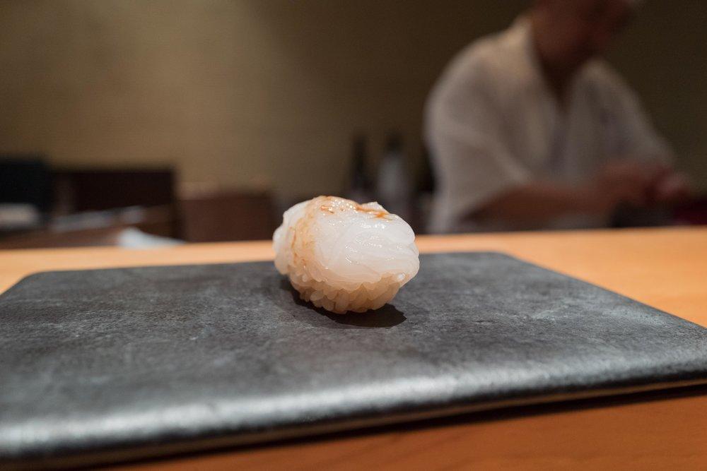 kimura_7_shiroika_1week.jpg