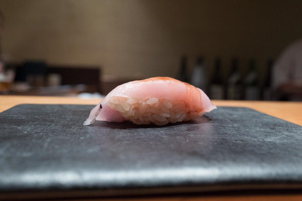 kimura_10_shiromi3.jpg