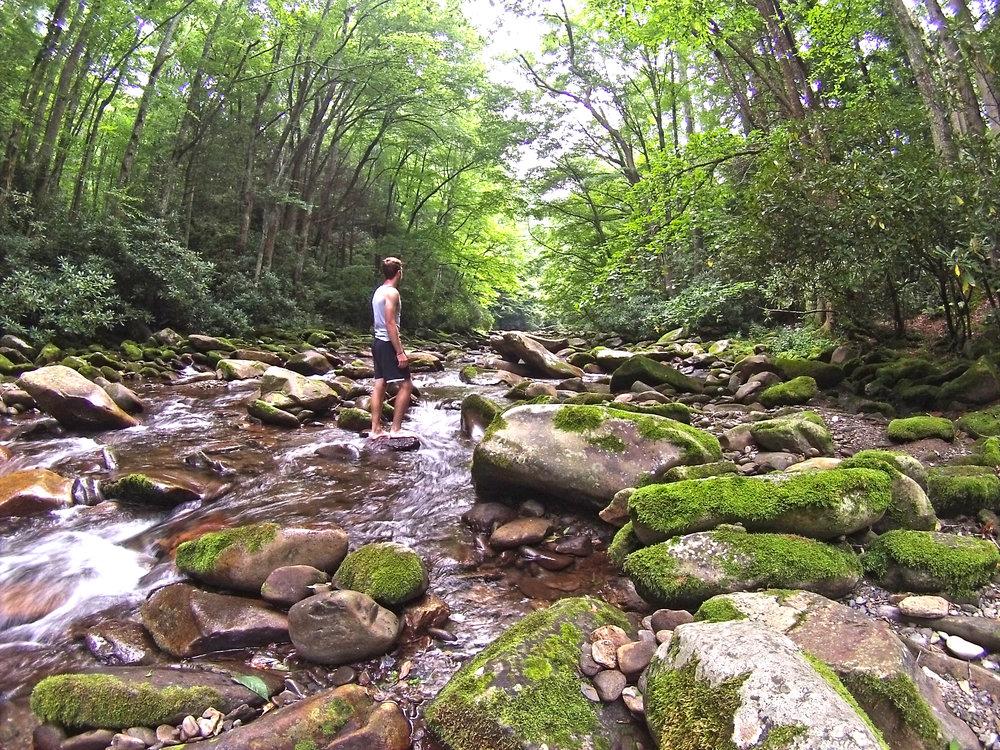Big Creek Looking Off.jpg