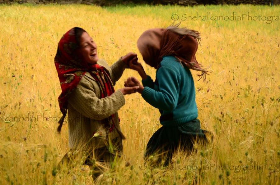 ladakhs-7