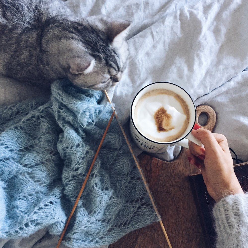 Coffee_and_cat.JPG
