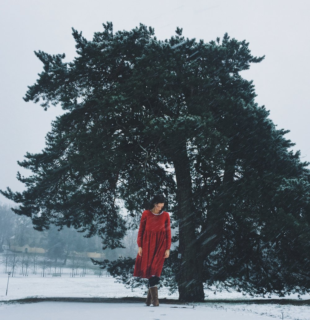 Winterlandscape and girl in a red dress