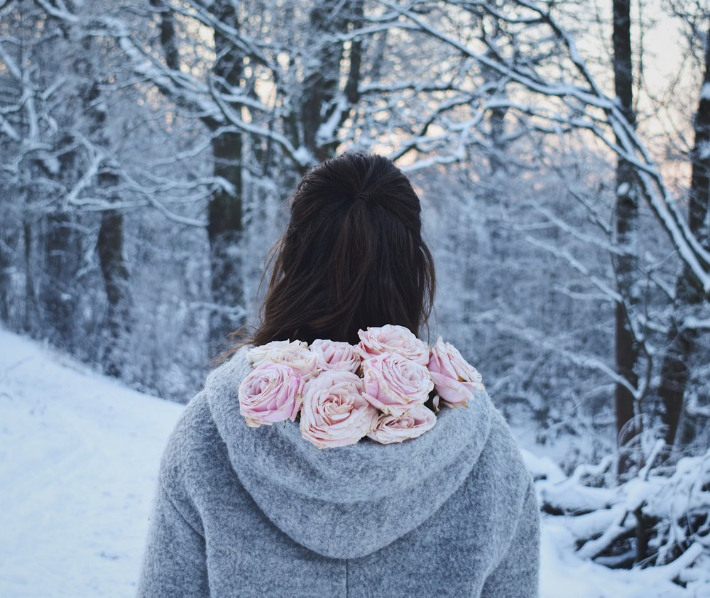 Winter landscape and roses in my hood