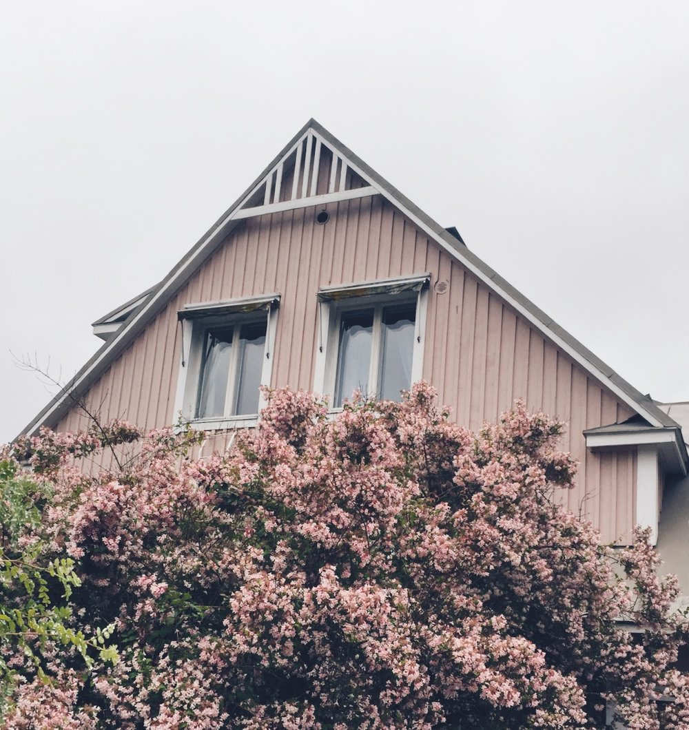 Photos from the Archive-  Celebrating the Imperfect. A pink house surrounded by pink flowers