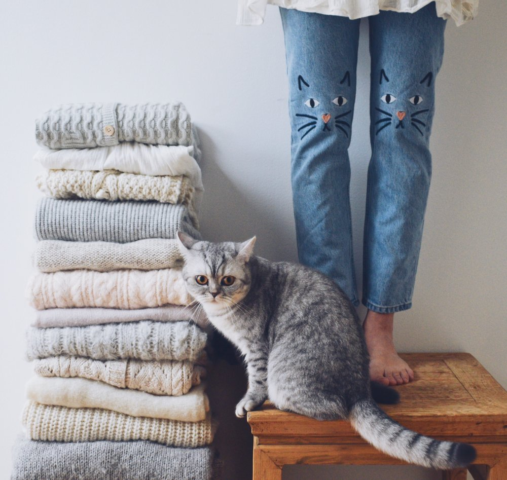 Make your wishes come true with this little trick- Cat and emboidered cat jeans