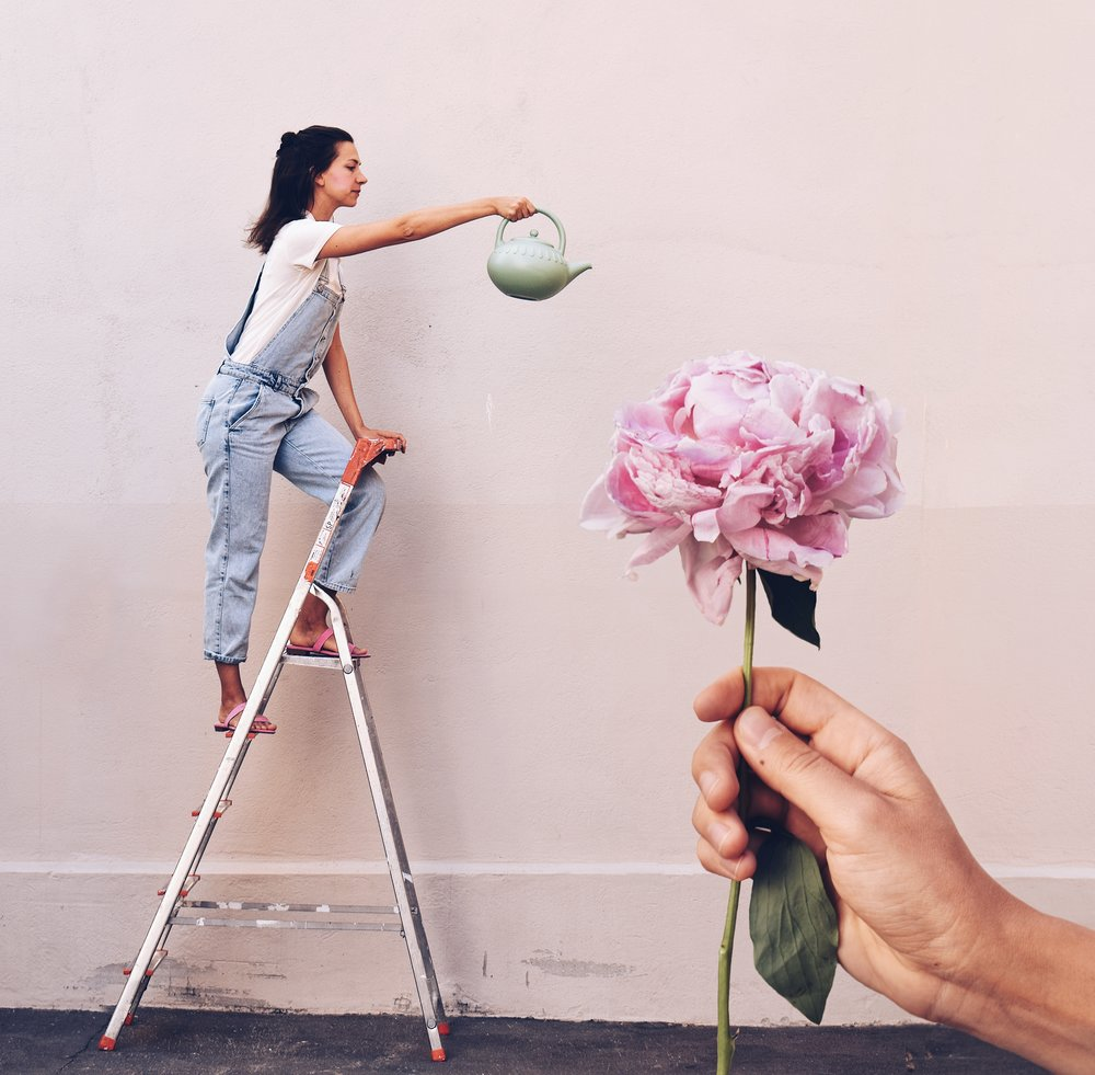 3 photo composition tips for better storytelling on Instagram- Watering my giant peony on the ladder, forced persepctive photography