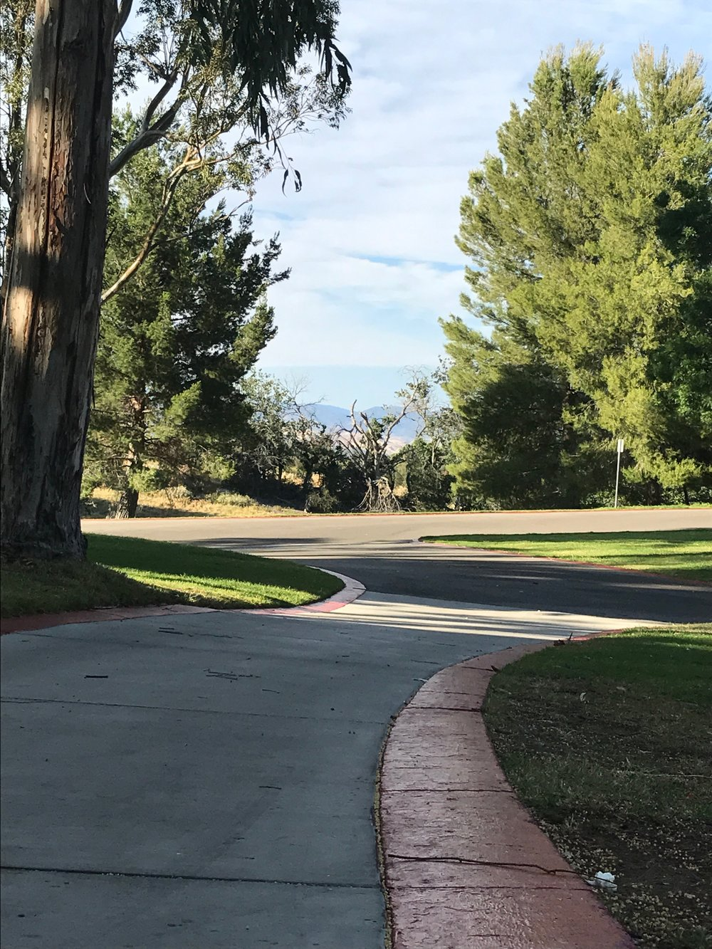 A 30 minute silent walk around the grounds of CalArts meditating on my question.