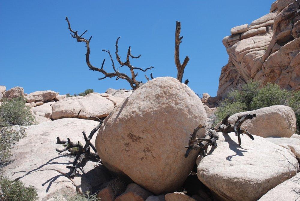 Over the shoulder, boulder holder!