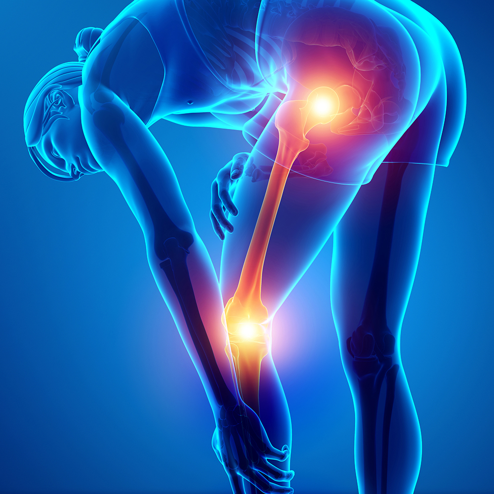 cityphysio-symptoms-lowerlimbs-hamstring.jpg