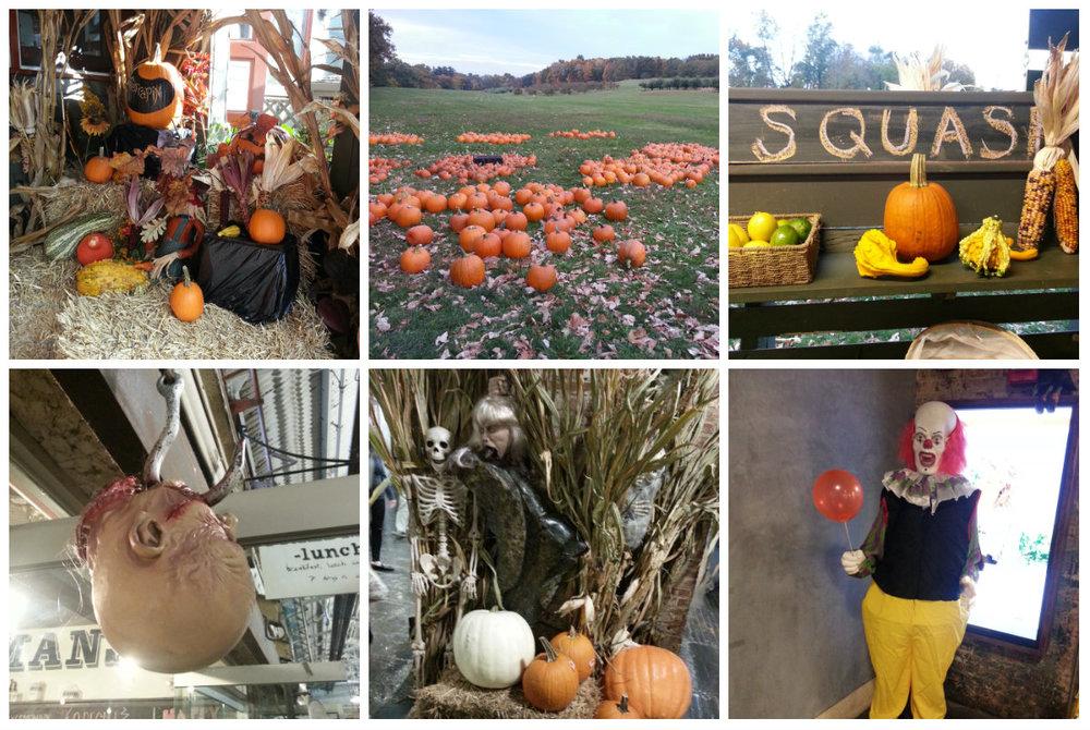 Rangée du haut: Pumpkin patch à côté de Rhinebeck - Rangée du bas: Halloween dans une galerie marchande à New York - photos prises en Octobre dernier
