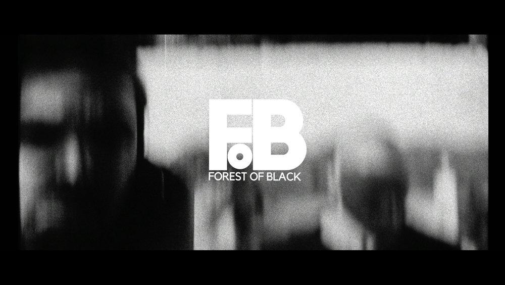 forest of black.jpg