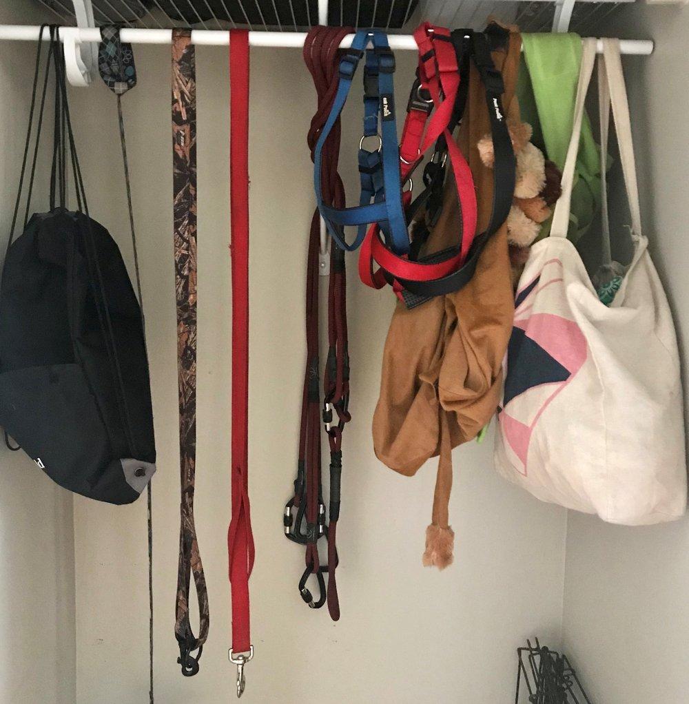 dog closet - center.jpg