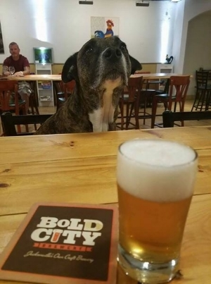 Bold City Brewery.jpg
