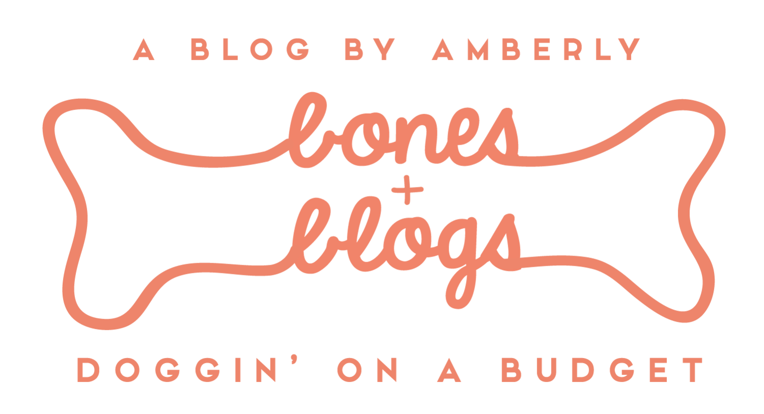 Bones and Blogs