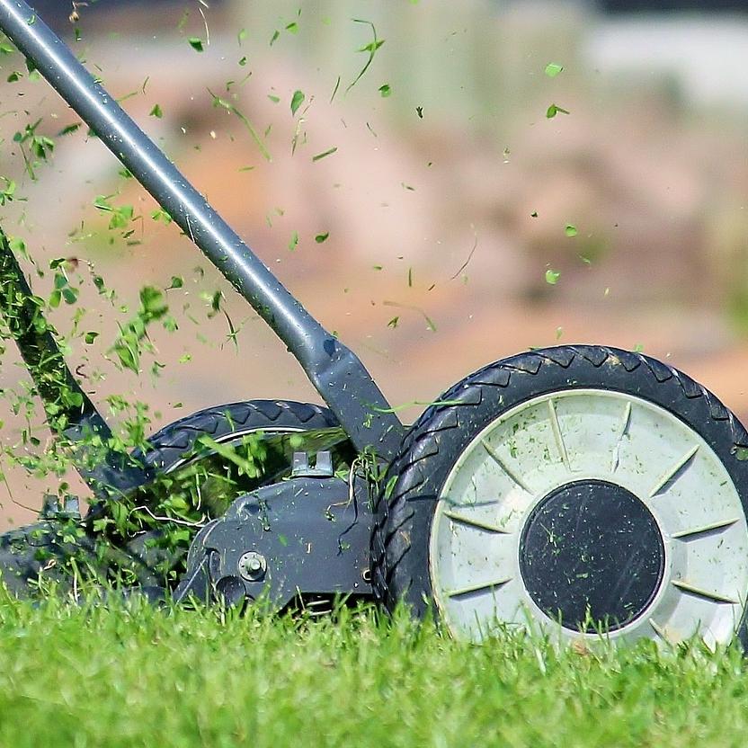 Éco-entretien de la pelouse - Été 2015