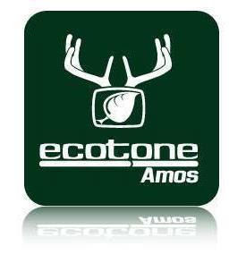 ecotone.jpg