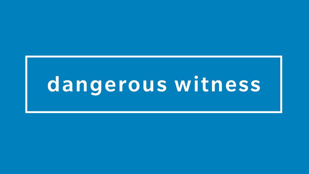 Dangerous Witness DS.jpg