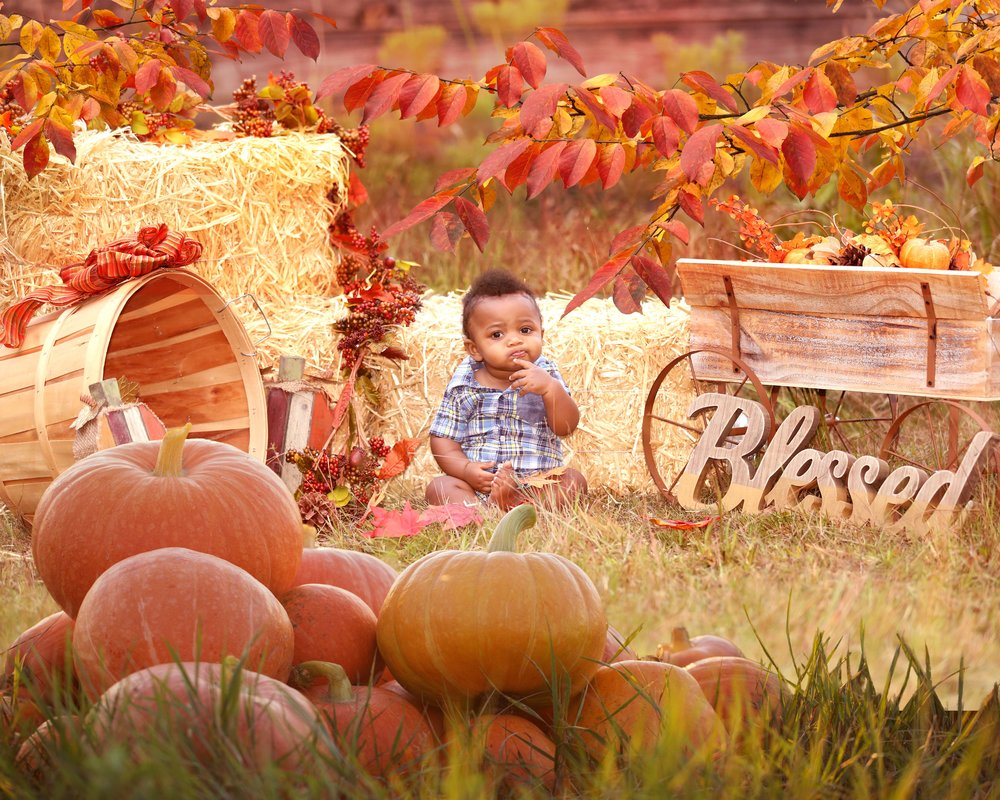 16x20 Pumpkin Haze with Liam with leaves.jpg