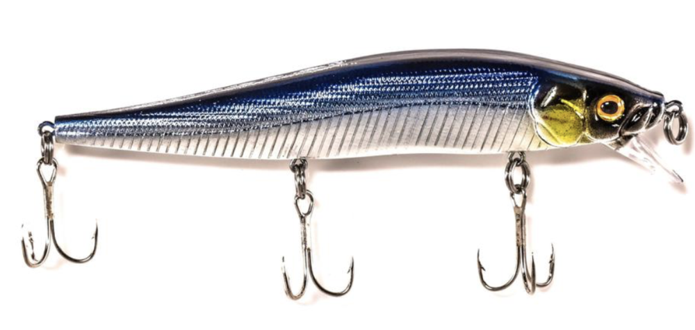 Back Bay Minnow blue silver.png