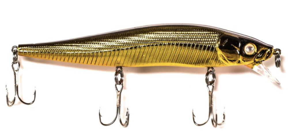 Back Bay minnow gold.png
