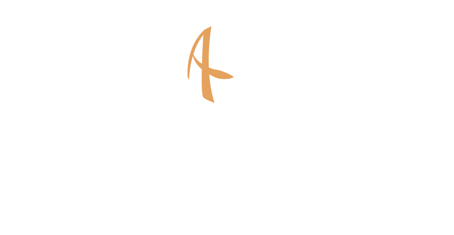Active Impact International