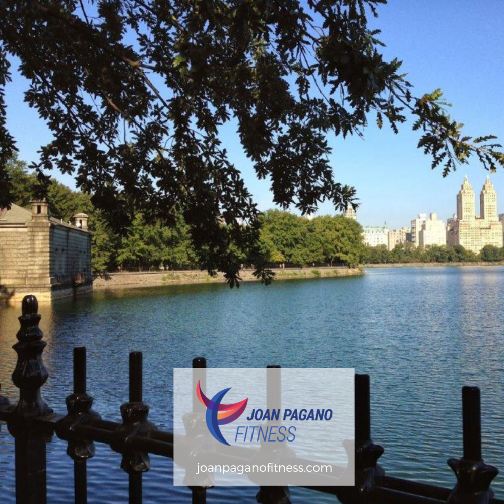 JPF-Instagram-Central_Park_Reservoir.png